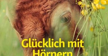 Zeitschrift info3, Ausgabe Mai 2019. © Info3 Verlag