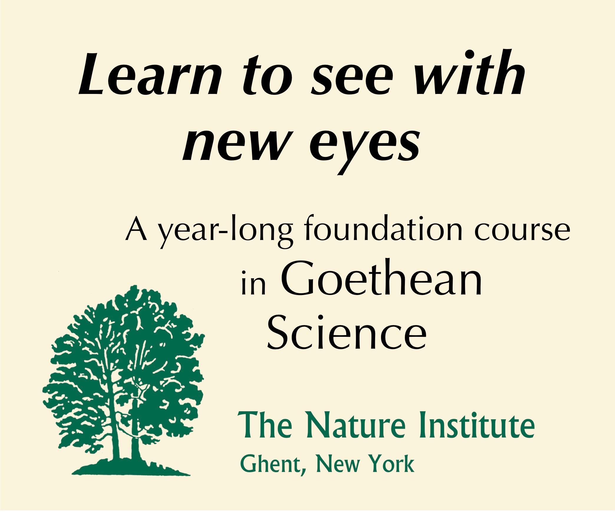 Nature-Institute_Banner.jpg