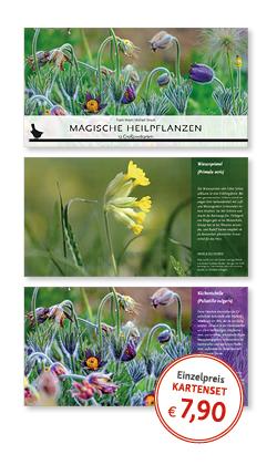 Postkartenset Magische Heilpflanzen