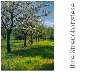 Aboprämie Info3: Streuobstwiese. © Info3 Verlag